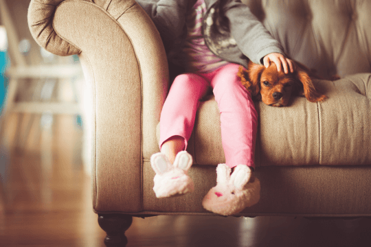 Child and sad dog on a sofa, social services intervention